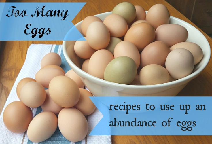 Recipe Collection:  An Abundance of Eggs & The Best Pudding Ever