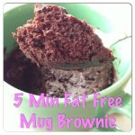 Fat Free Mug Brownie