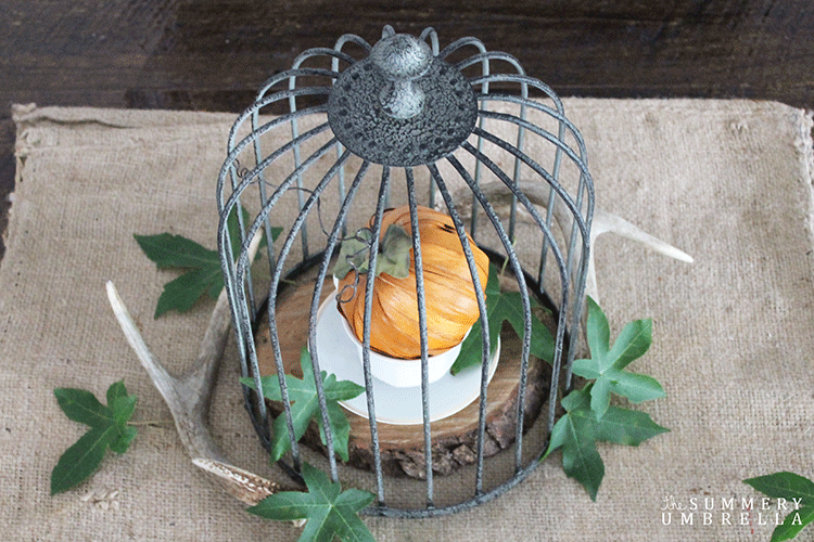 Create a beautiful rustic fall centerpiece with just a few gorgeous items.