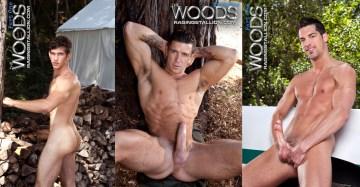 woodsthm