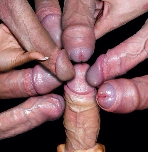 group of cocks dripping cum