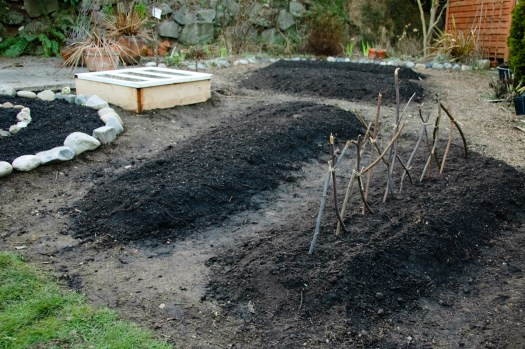 The Mud Quiche.  I'm hoping that once the beds are planted I'll be able to shake the morbid feeling that our yard looks like it's full of freshly-dug graves!