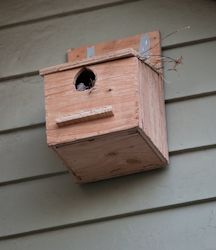 "The ""Roofer's Birdhouse,"" when it was new."