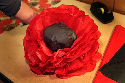480-flowerdone-IMG_1132