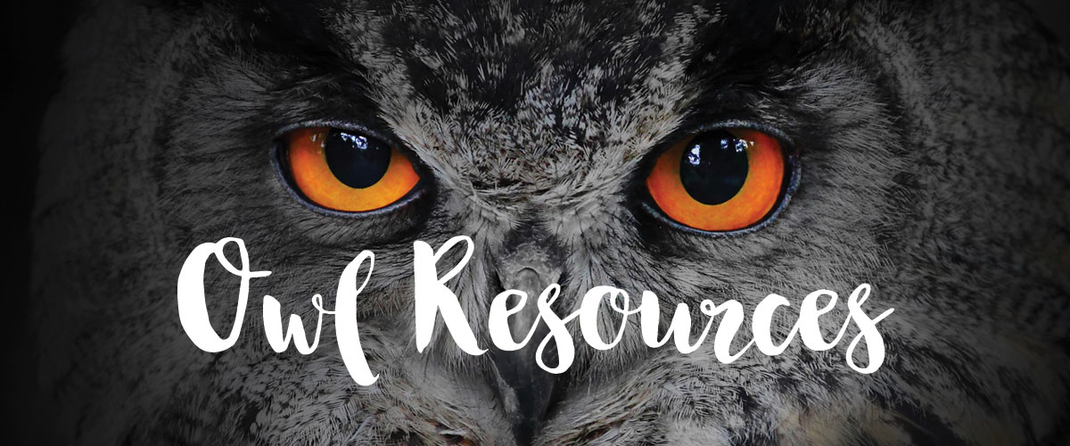 Owl resources