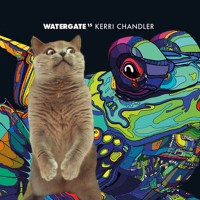 WATERGATE 15 | KERRI CHANDLER | REVIEW