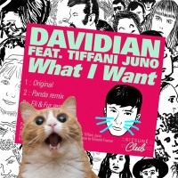DAVIDIAN | WHAT I WANT EP
