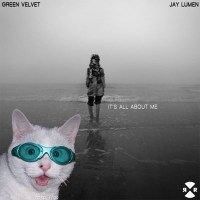 GREEN VELVET & JAY LUMEN | IT'S ALL ABOUT ME (JAY LUMEN REMIX)