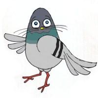 Pigeon Dancing