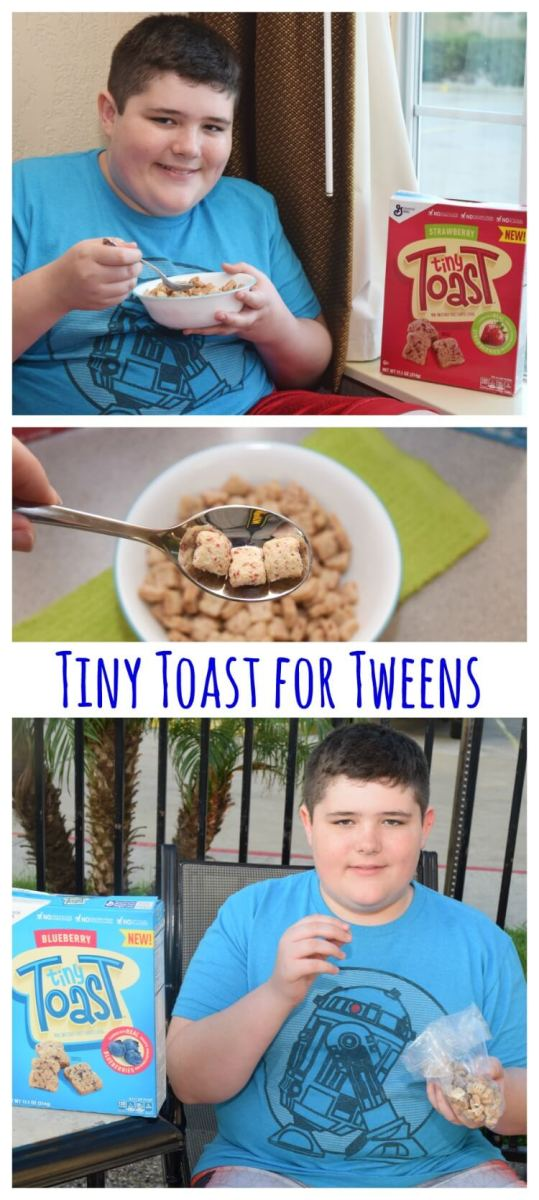 Tiny Toast for your Tween