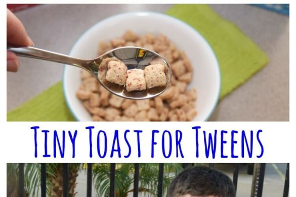tiny-toast-label-2