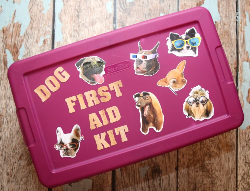 Make a #DIY First Aid Kit for your New Dog! #ad #NewBeneful #rescuedog #craft