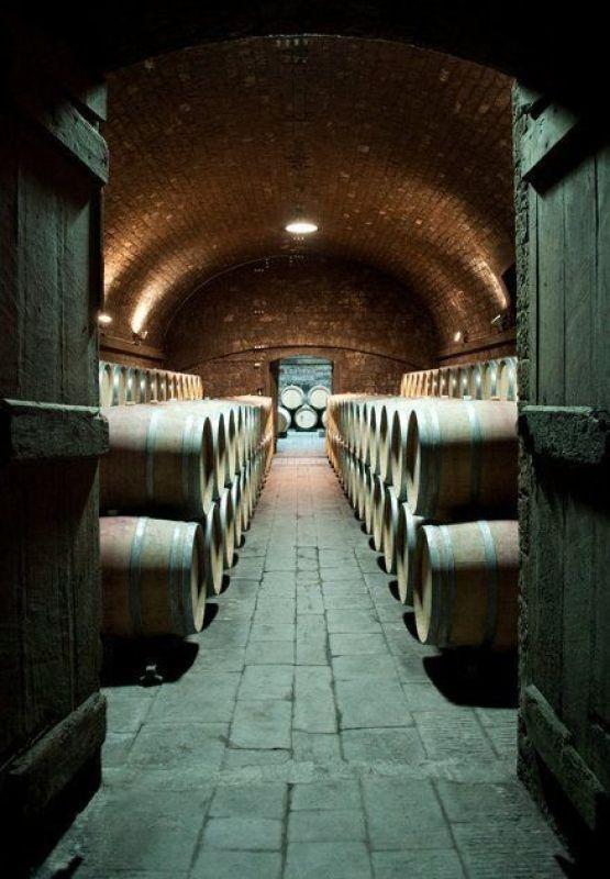 Wine Cellar of Badia a Passignano