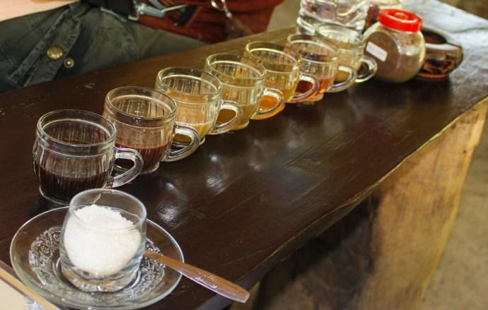 testing tea and coffee at Bali plantation