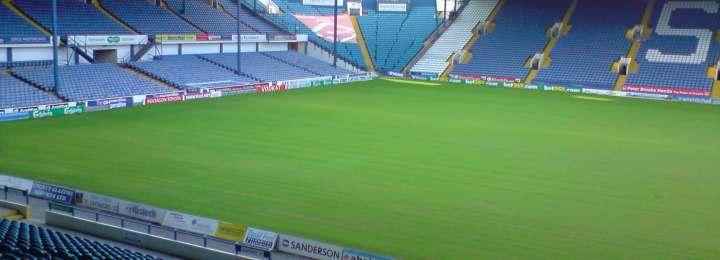 Kieran Lee and José Semedo are providing Sheffield Wednesday with a New Poise