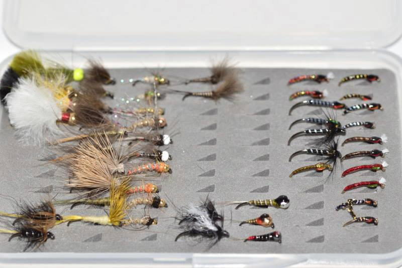 Win a box of flies