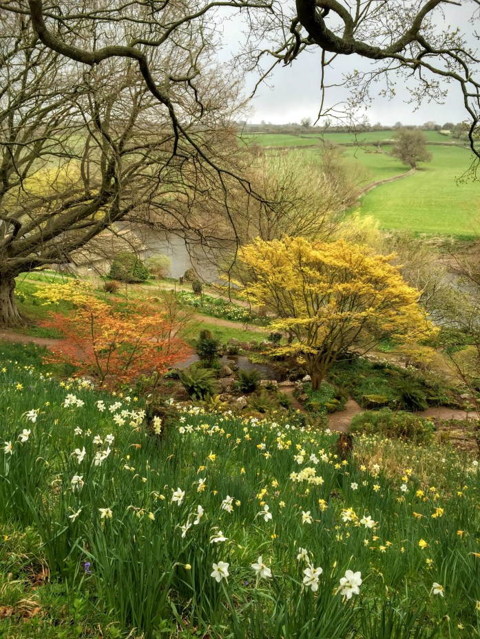 Spring colours against the grey skies at The Weir Gardens in Herefordshire