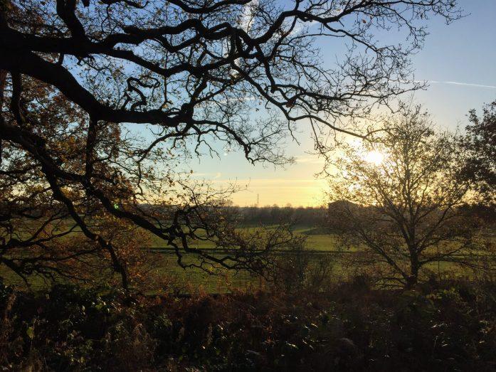 Gentle Strolls around Dunham Massey | National Trust North West | Cheap Days Out Near Manchester | Parks Near Manchester | Cheshire Parks | The Urban Wanderer | Sarah Irving