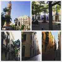 A Vegan Guide to Barcelona... (Part One of Many)