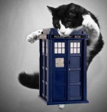Doctor Who: If the Last 10 Doctors Were cats....