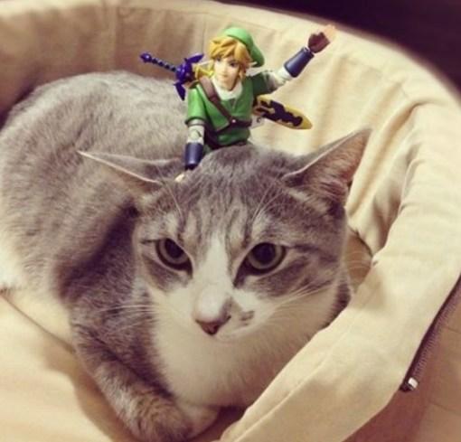 Top 10 Fantasy Images of Legend of Zelda Cats