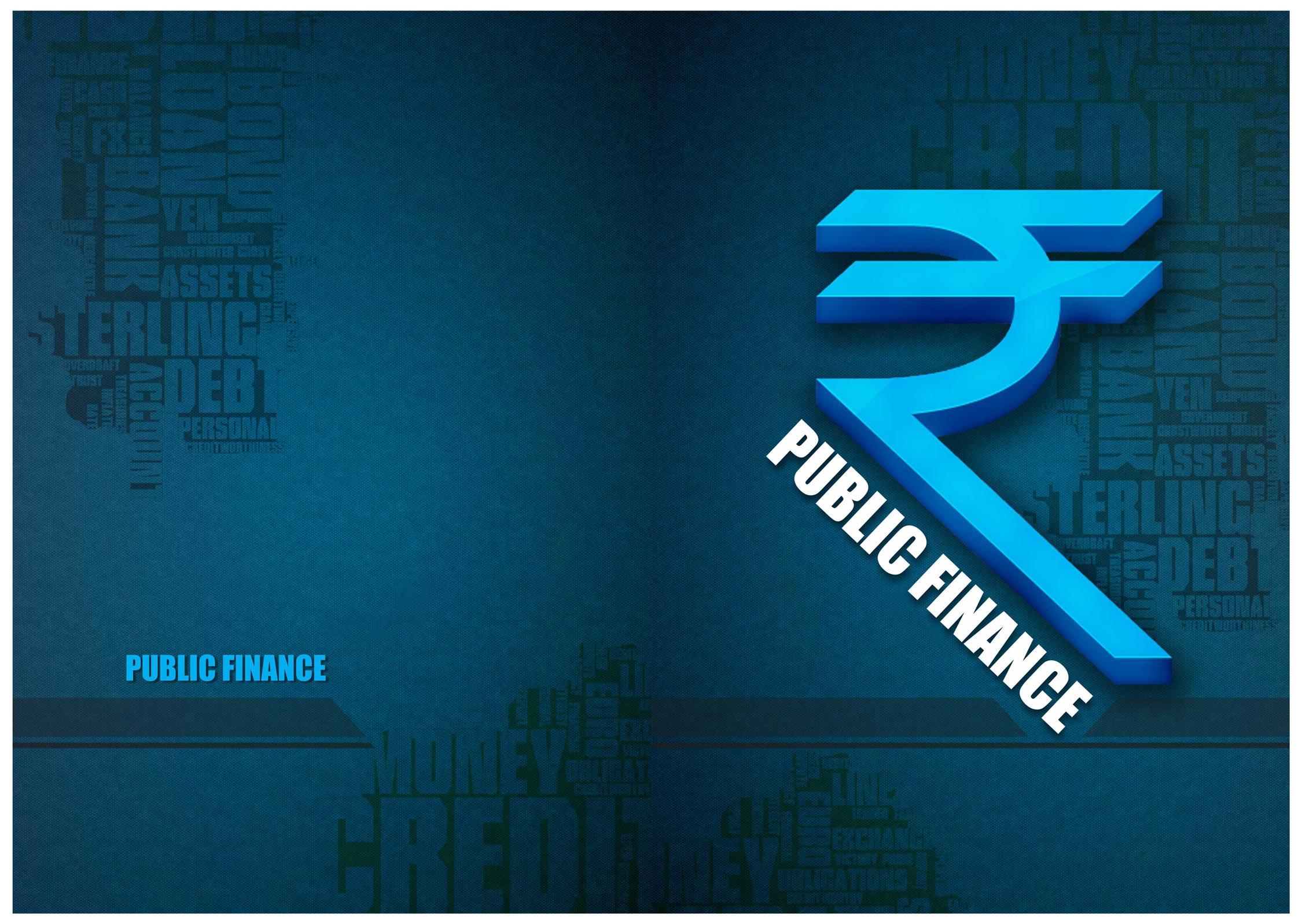 public-finance-business-graphic-design