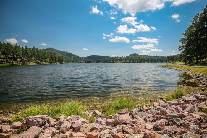 Custer State Park 02