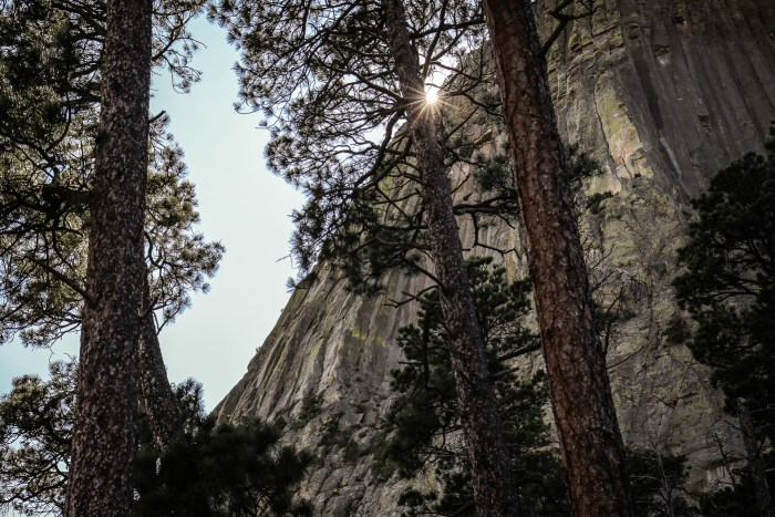 Devils Tower14