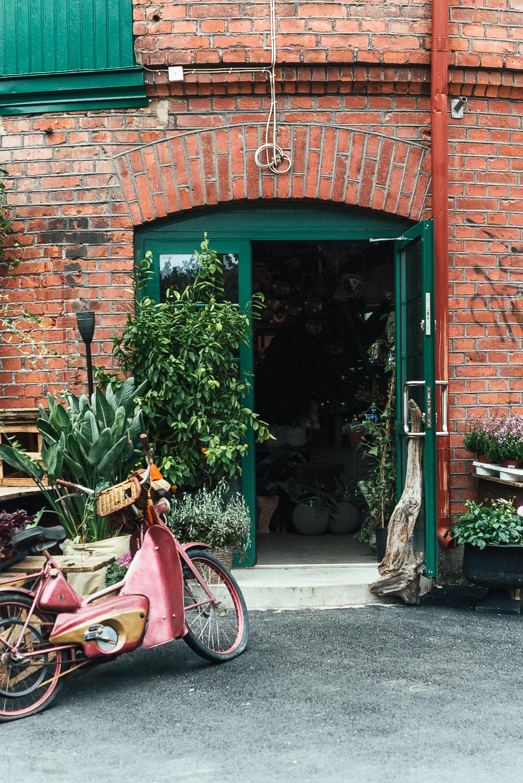 Herbanist inrednings -och trädgårdsbutik i Sundsvall © Rania Maria Photography