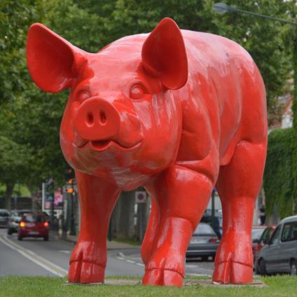 sweetlove pig