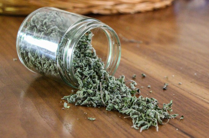 how to dry oregano and other herbs
