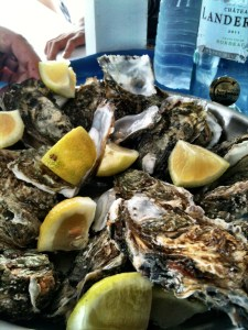oysters of Arcachon