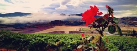 Navarra – A Wine Region of Diversity