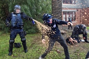 A policeman deploys capsicum spray towards a protester during clashes in the Melbourne suburb of Coburg, Australia, May 28, 2016. Credit: AAP/Julian Smith/via Reuters