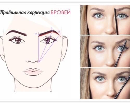 брови как правильно придать форму фото