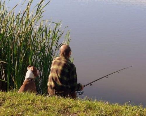 видео рыбаков по берегам