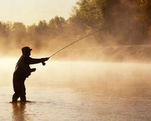 сонник что означает ловля рыбы