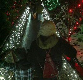 Capilano Canyon Lights: Enjoy the Holiday Magic