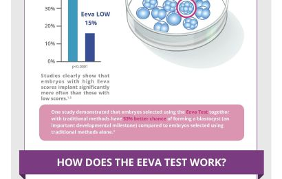 The EEVA Test - Featured on The Write Mama