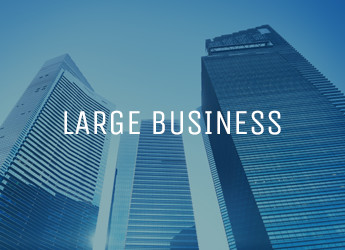 Large Business Website