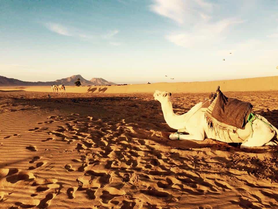 ADVENTURE INTO THE SAHARA DESERT: ZAGORA