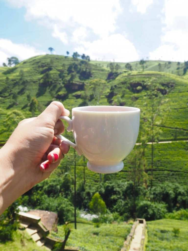 top things to do nuwara eliya