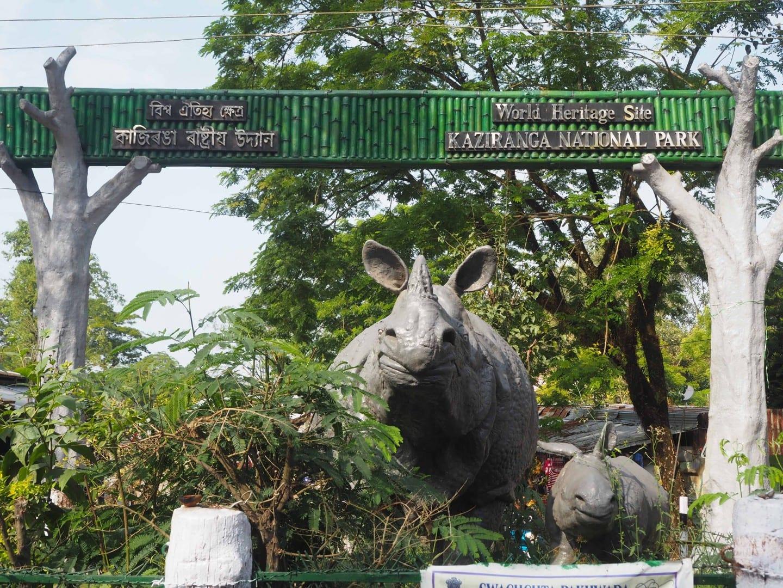 kaziranga national park safari 2018