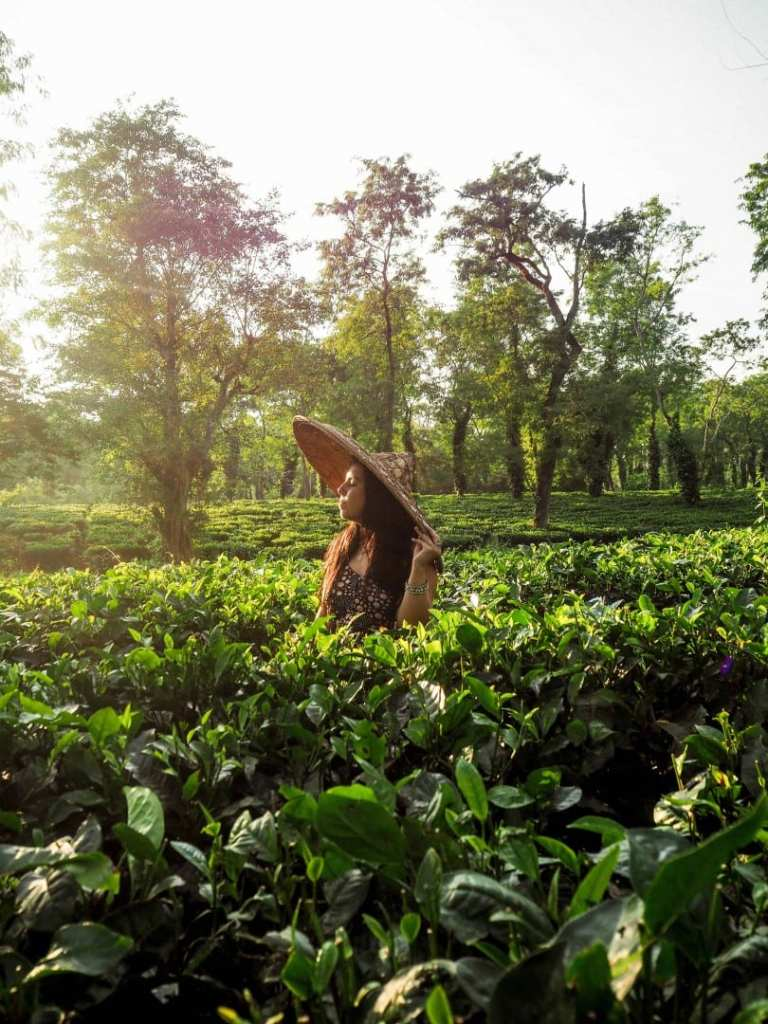 21 PHOTOS THAT WILL INSPIRE YOU TO VISIT AWESOME ASSAM!