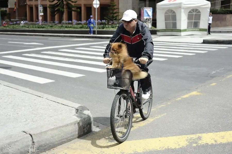 bici-0