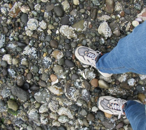 Sandra's tennis shoes at beach