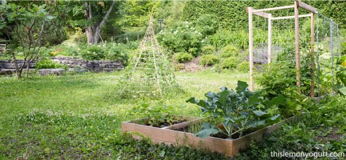 garden-09