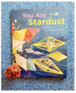 you-are-stardust-picture-book