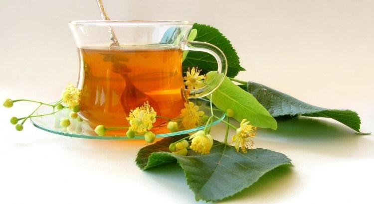 lime-flower-1057258-1280x960