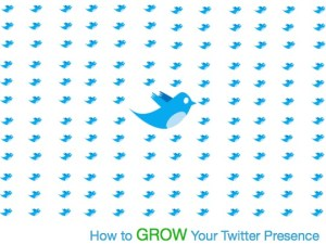 how-to-grow-twitter-presence